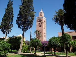 10 not to miss experiences in Marrakech